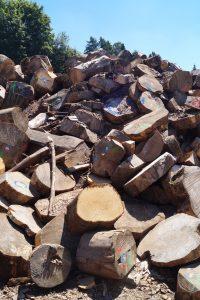 BrennholzDSC01717